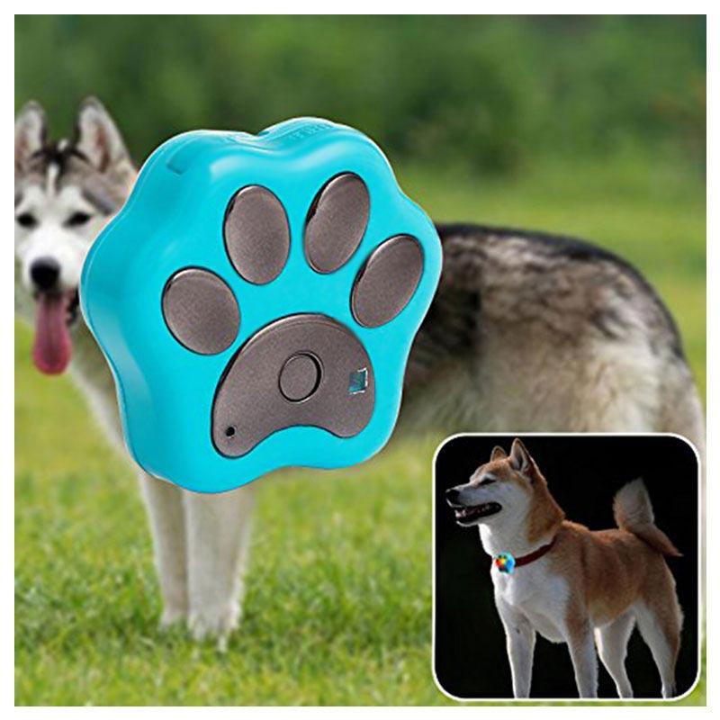 Pet activity tracker app