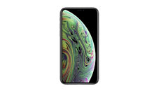Cover in Silicone 4smarts Cupertino Ice per iPhone X / iPhone XS